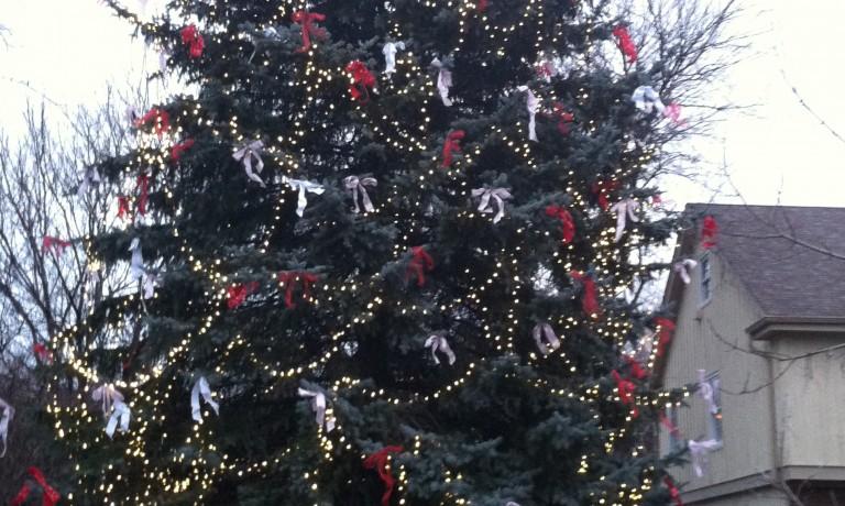 Kelli's Tree