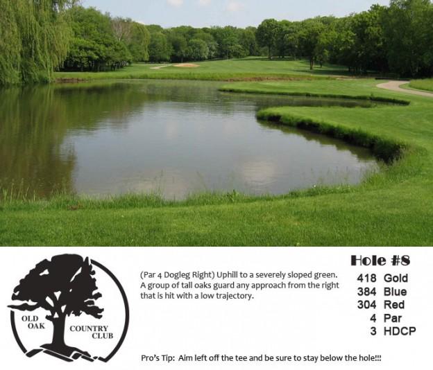 18th Annual Clarendon Hills Golf Classic